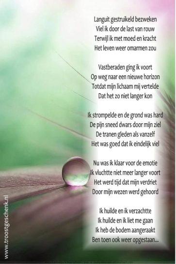 Languit gestruikeld en bezweken Gedicht Karin Troostgeschenk Lichtgidsen
